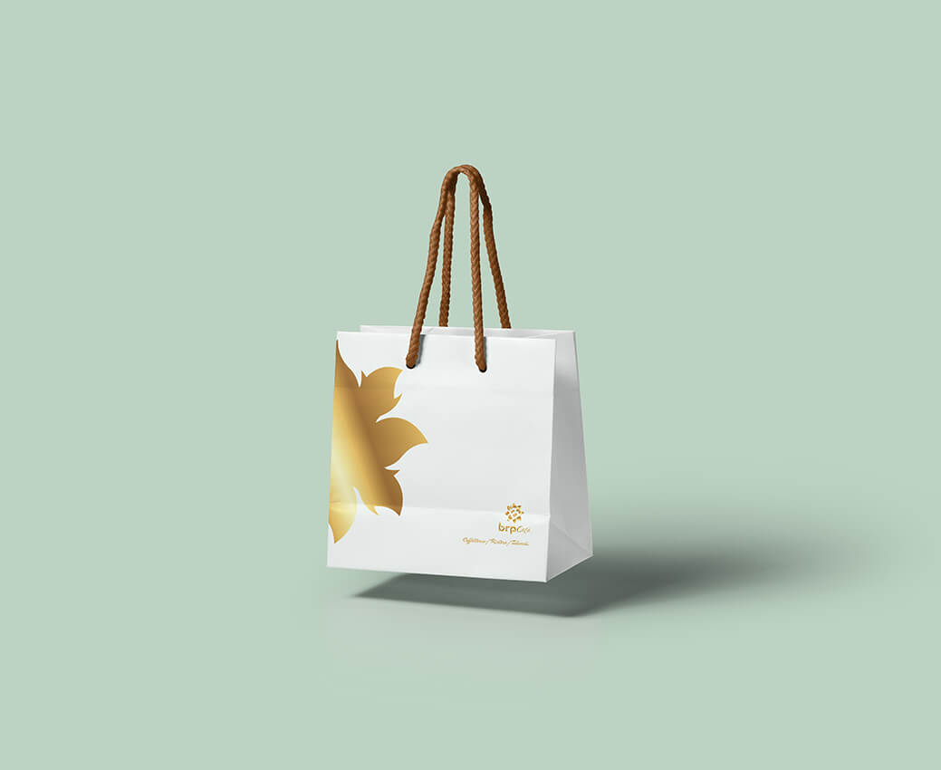 Gravity-Jewelry-Paper-Bag-brp